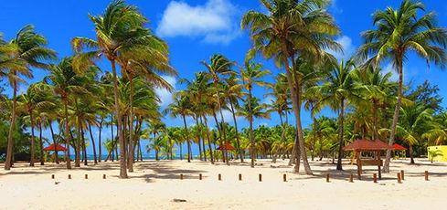la-de-sirade-plage-a-fanfan.1460026.40.jpg